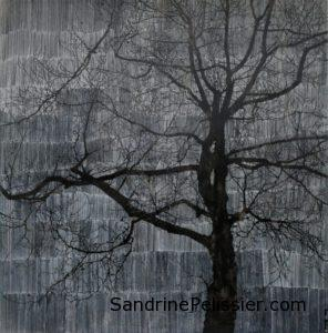 Vancouver Canadian artist Sandrine Pelissier